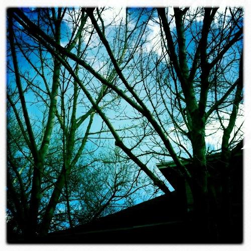 2011-03-23_at_12